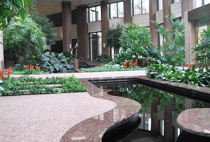 Landscaped entry area of building